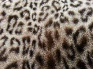 Fausse fourrure, fausse fourrure animaux, fourrure synthétique, fourrure synth. - Acheter du Tissu, acheter du tissu pas cher, acheter tissu, acheter du tissus, tissu pas cher, tissus pas cher, destockage tissus, destockage tissus pas cher, destockage de tissus pas cher, achat tissu, vente de tissus, vente de tissus en ligne, site de vente de tissus, vente de tissus au mètre, tissus au mètre, tissu au mètre original, tissu original, tissus originaux, coupon tissu gratuit, échantillon tissu gratuit, tissus au mètre pour vêtements, vente de tissus en ligne France, vente de tissus en ligne Paris, vente de tissus Paris, vente de tissus France, tissus au meilleur prix, tissus de qualité, promotion tissu, promotions tissus, mercerie, mercerie en ligne