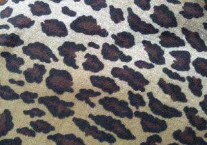 Lainage style chanel, tissu style chanel, tissu lainage style chanel, tissu chanel, tissus fantaisie, tissu fantaisie, tissus chanel, tissus lainage style chanel, tissus pied de coq - Acheter du Tissu, acheter du tissu pas cher, acheter tissu, acheter du tissus, tissu pas cher, tissus pas cher, destockage tissus, destockage tissus pas cher, destockage de tissus pas cher, achat tissu, vente de tissus, vente de tissus en ligne, site de vente de tissus, vente de tissus au mètre, tissus au mètre, tissu au mètre original, tissu original, tissus originaux, coupon tissu gratuit, échantillon tissu gratuit, tissus au mètre pour vêtements, vente de tissus en ligne France, vente de tissus en ligne Paris, vente de tissus Paris, vente de tissus France, tissus au meilleur prix, tissus de qualité, promotion tissu, promotions tissus, mercerie, mercerie en ligne